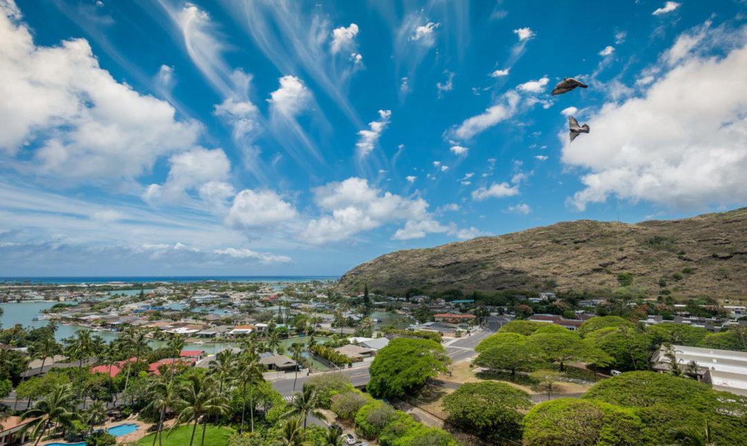 Oahu Real Estate Market Update | February 2017