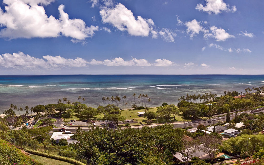 Neighborhood of the Month: Welcome to Hawaii Loa Ridge